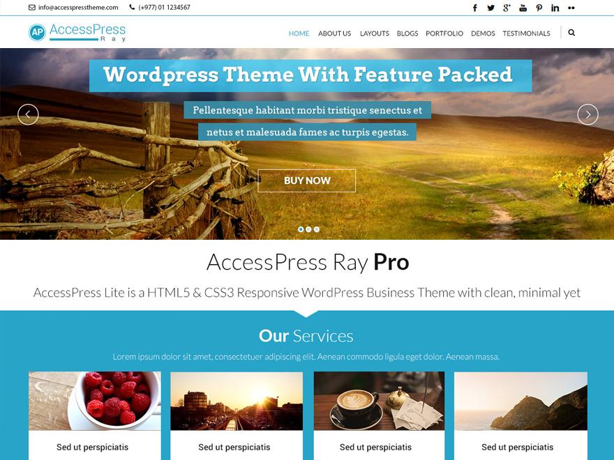 WordPress theme Accesspress Ray Pro Child