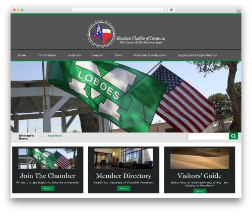City Government WordPress website template - monahans.org