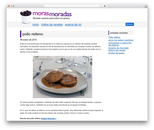 Free WordPress Retweet Anywhere plugin - morasmoradas.com