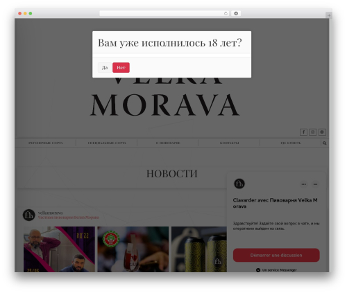 Shadower WordPress website template - moravabeer.ru/moravabeer