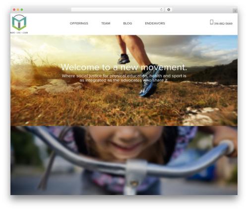 Free WordPress Easy Video Player plugin - movelivelearn.com