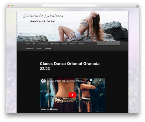 WordPress really-simple-twitter-feed-widget plugin - manueladanza.es