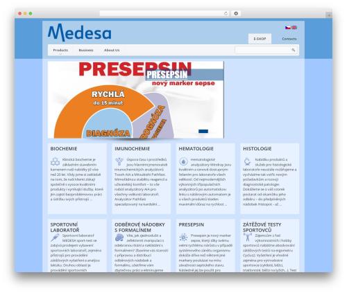 WordPress website template theme1626 - medesa.cz/en