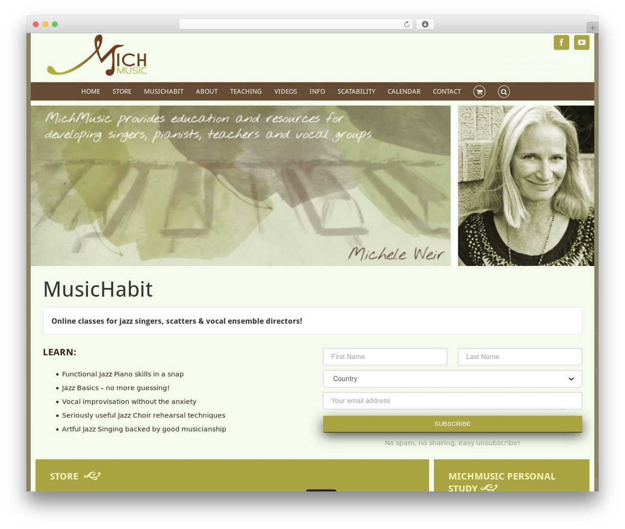 WordPress website template Avada - michmusic.com