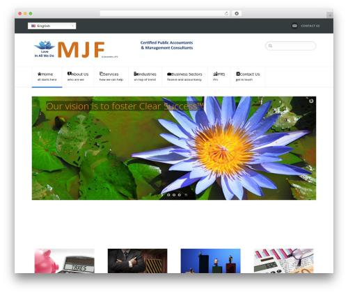 NetStudio top WordPress theme - mjfllp.com