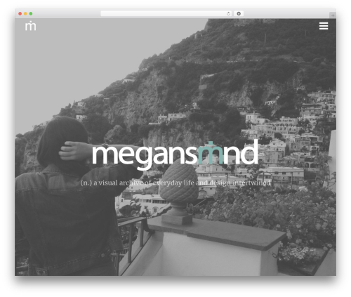 WordPress instagram-picture plugin - megansmind.com