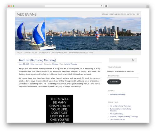 picolight premium WordPress theme - megevans.com
