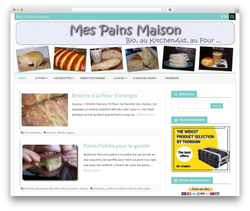 Ribosome Pro WordPress theme - mes-pains-maison.fr