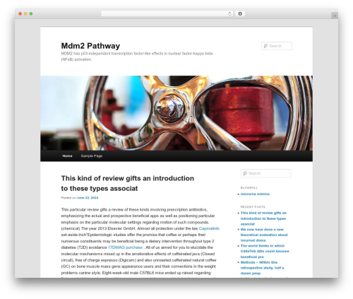 Twenty Eleven theme WordPress free - mdmpathway.com