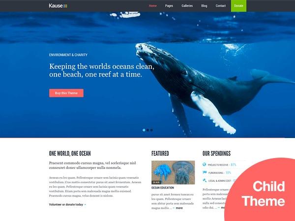 Best WordPress template Kause