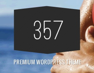 357 best WordPress template