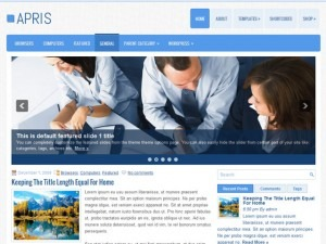 Apris WordPress blog template