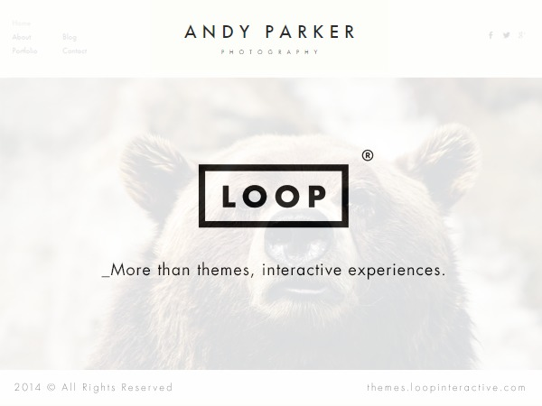 Best WordPress theme Andy Parker Child