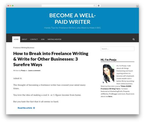 Best WordPress theme Simone - wellpaidwriters.com