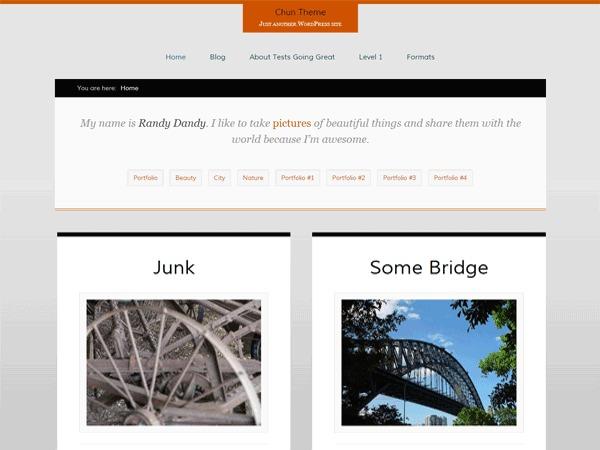 Chun best portfolio WordPress theme