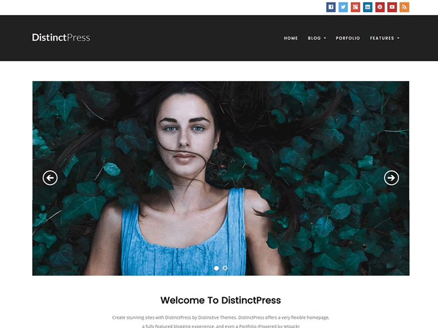 DistinctPress theme WordPress free