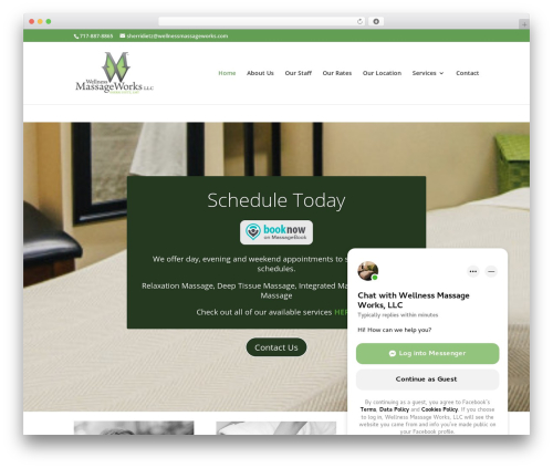 Divi massage WordPress theme - wellnessmassageworks.com