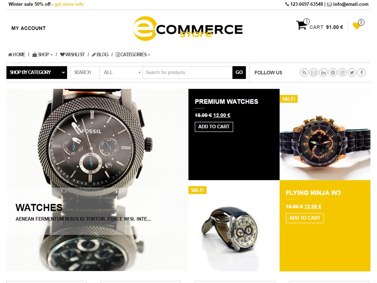 eCommerce Store WordPress store theme