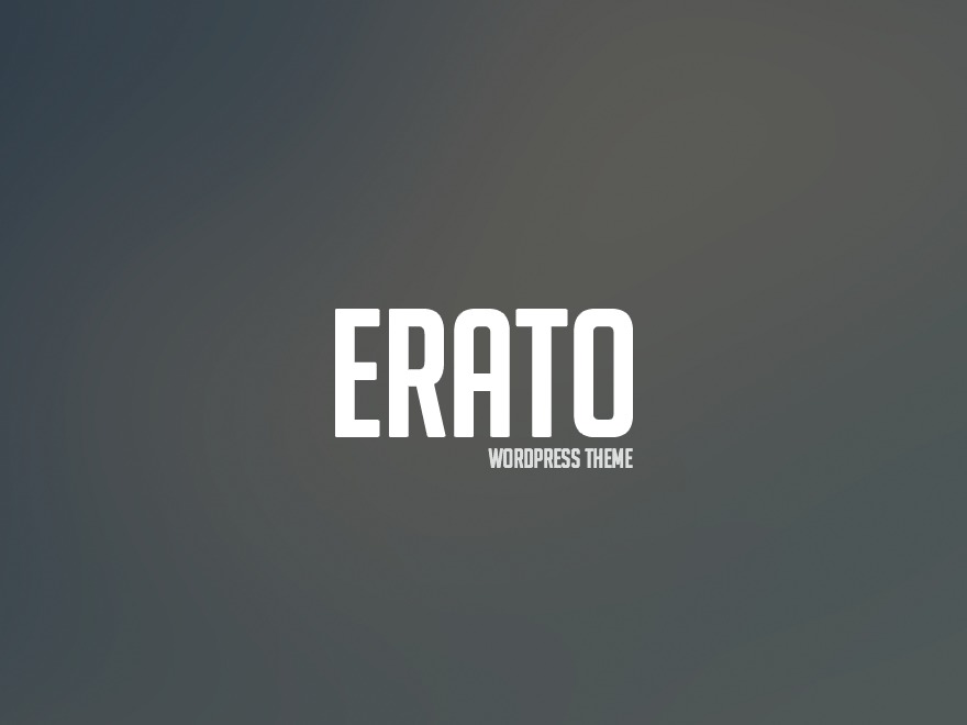 Erato WordPress template for business