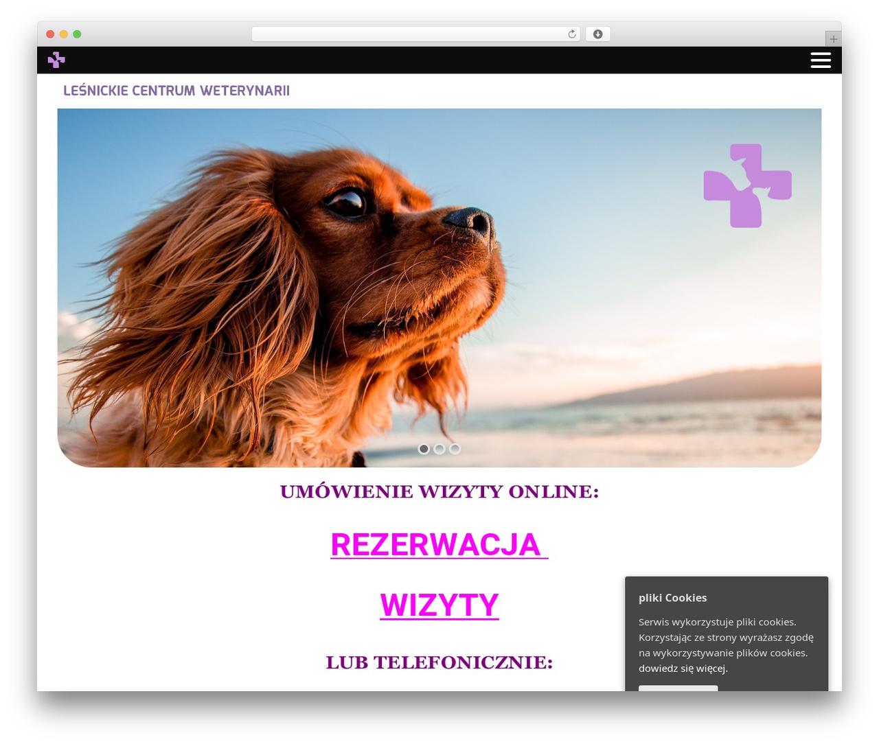 Narcos theme WordPress - wetlesnica.com