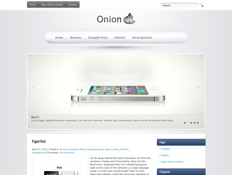 Onion best WordPress template