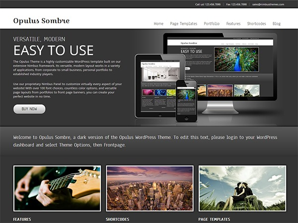Opulus Sombre business WordPress theme