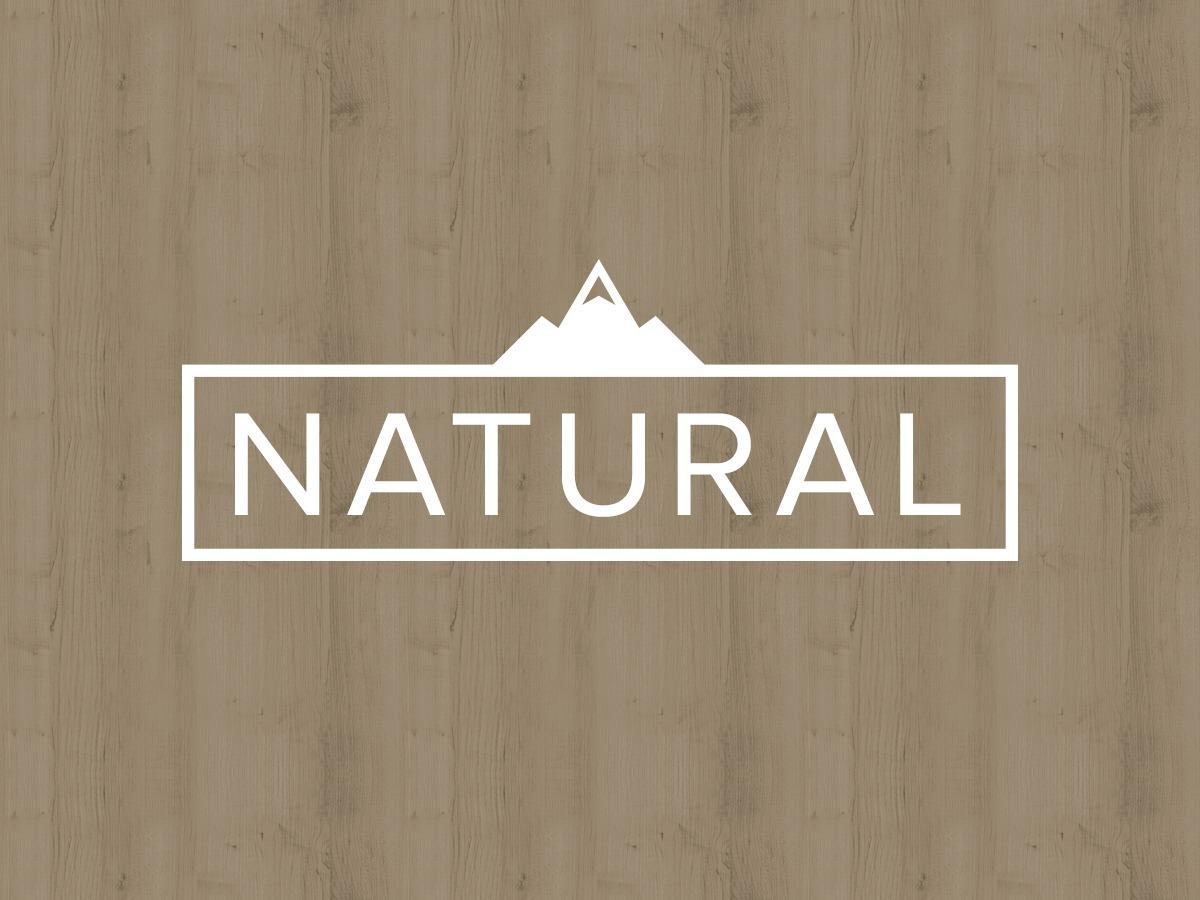 Organic Natural WordPress template for business