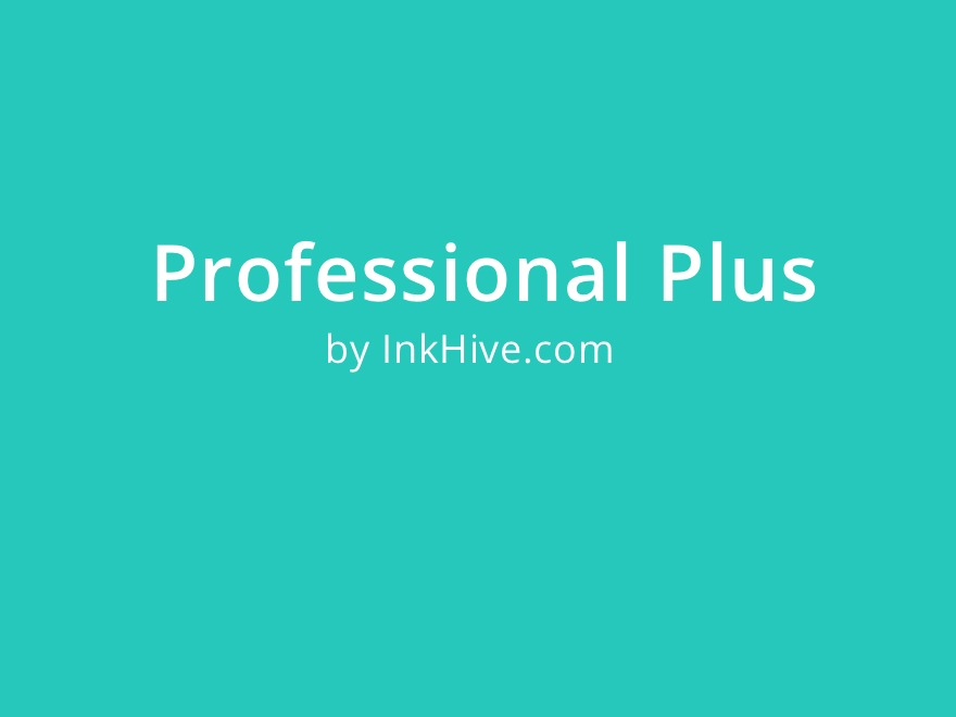 Professional Plus WordPress template