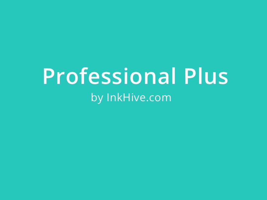 Professional Plus WordPress template
