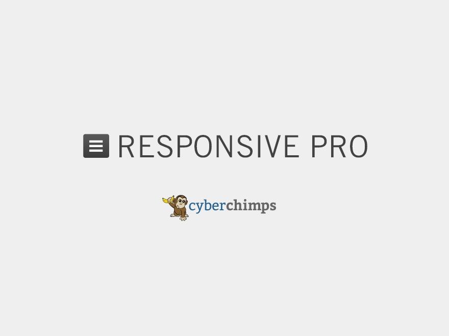 Responsive Pro WordPress ecommerce theme