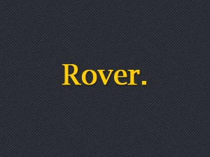 Rover WordPress shop theme