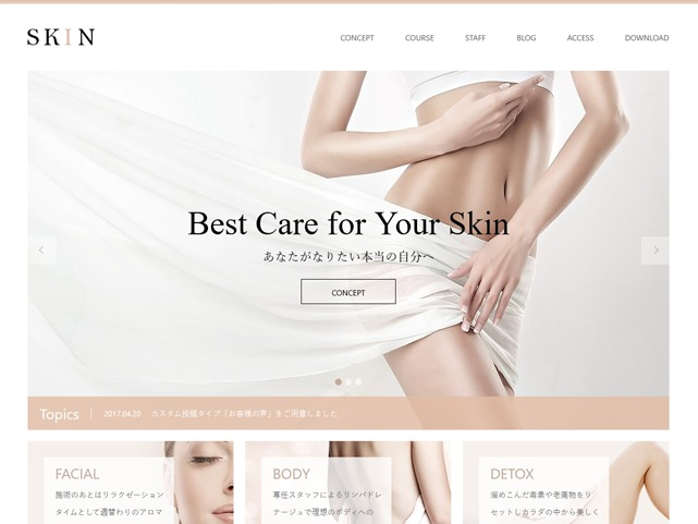 SKIN WordPress theme