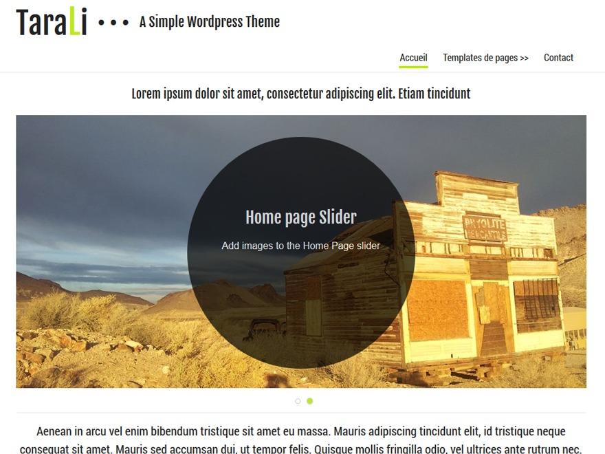Tarali best WordPress template