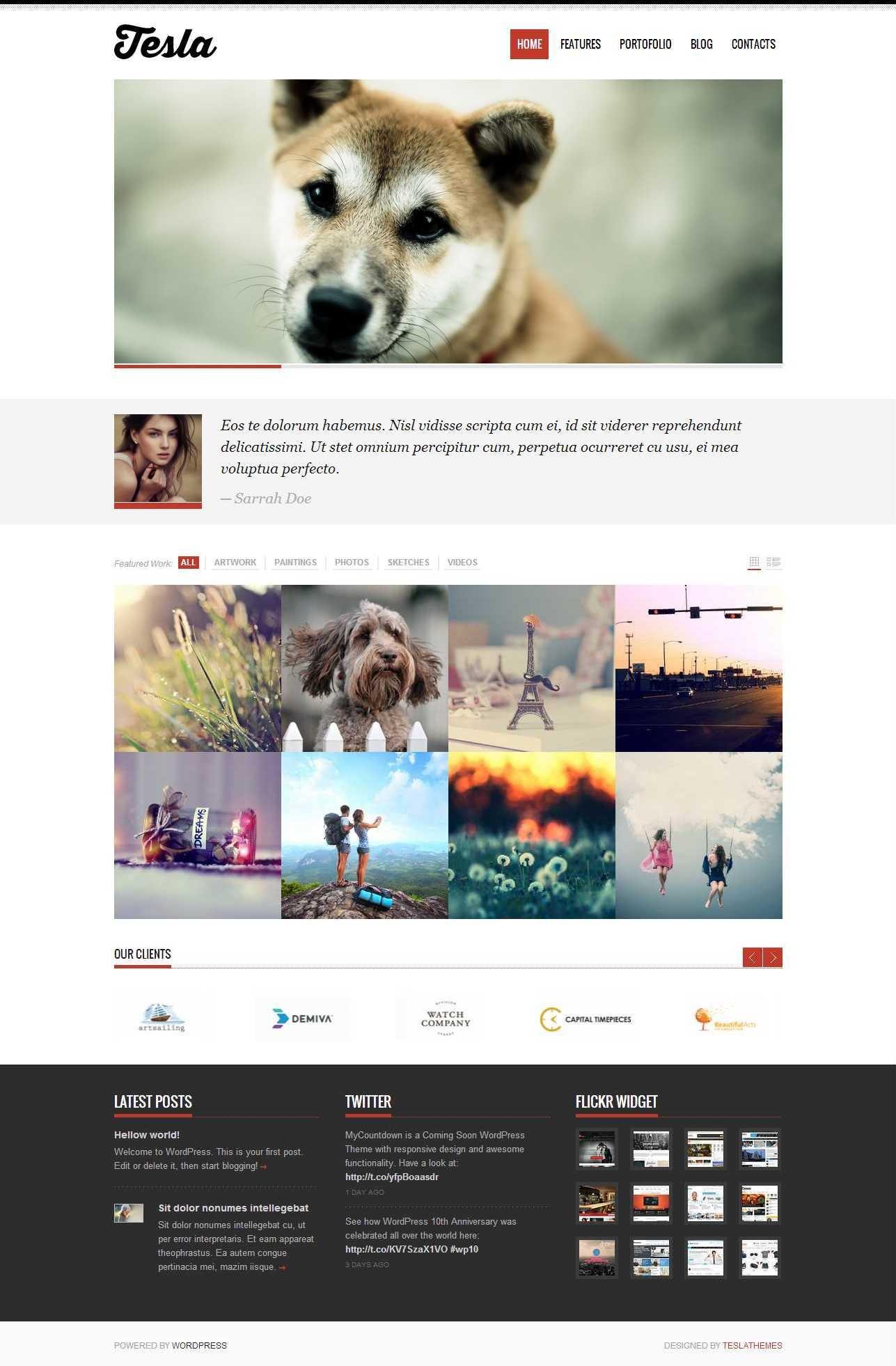 Tesla WordPress blog theme
