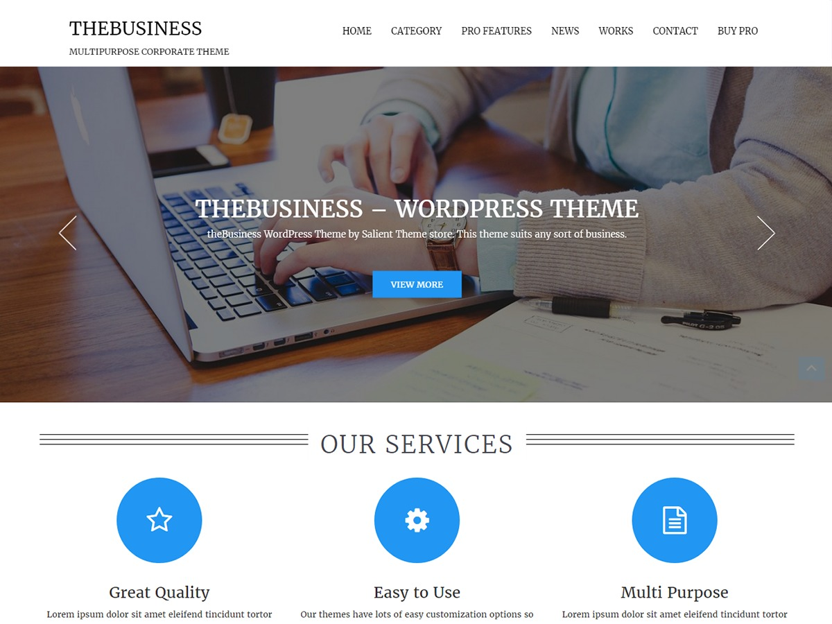 theBusiness free website theme