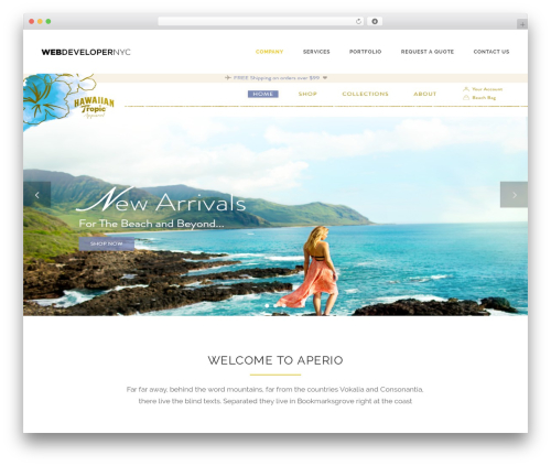 Theme WordPress Aperio - webdevelopernyc.com