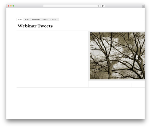 Thesis theme WordPress - webinartweets.com