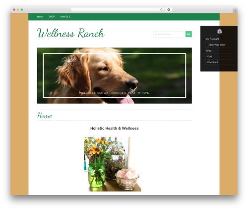Free WordPress BigContact Contact Page plugin - wellnessranch.net