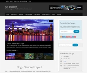 WordPress theme WP-Blossom