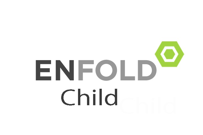 WordPress website template Enfold Child