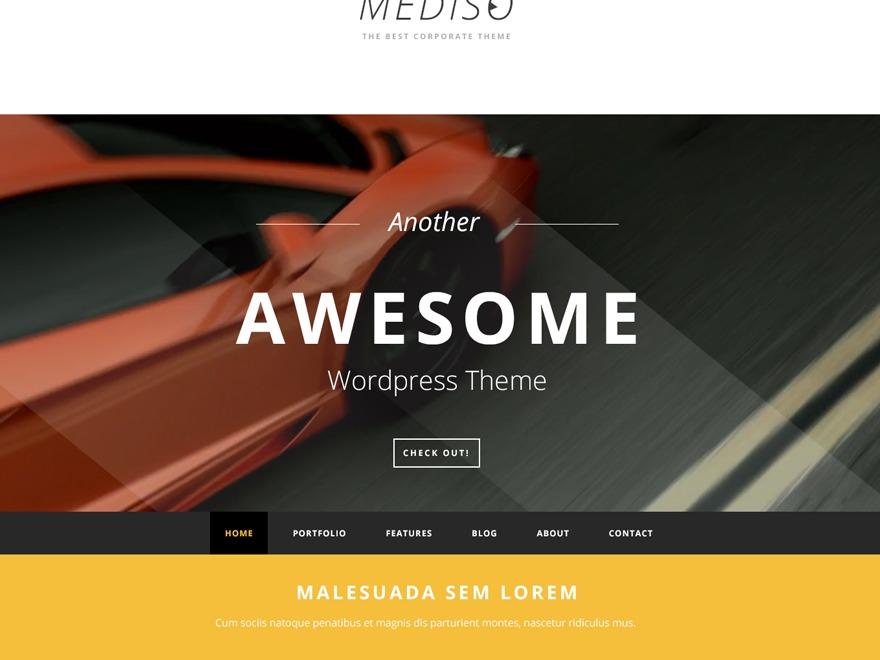 WordPress website template Mediso
