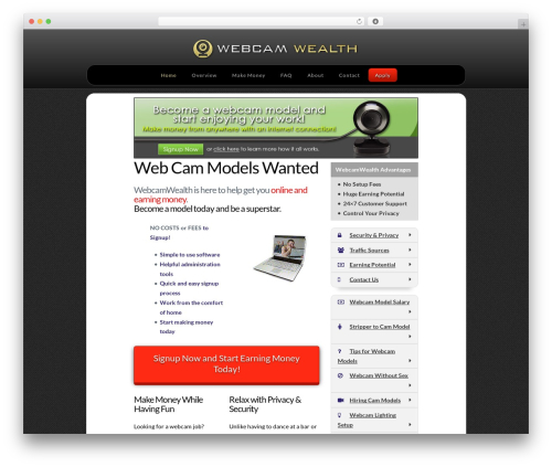 X best WordPress template - webcamwealth.com