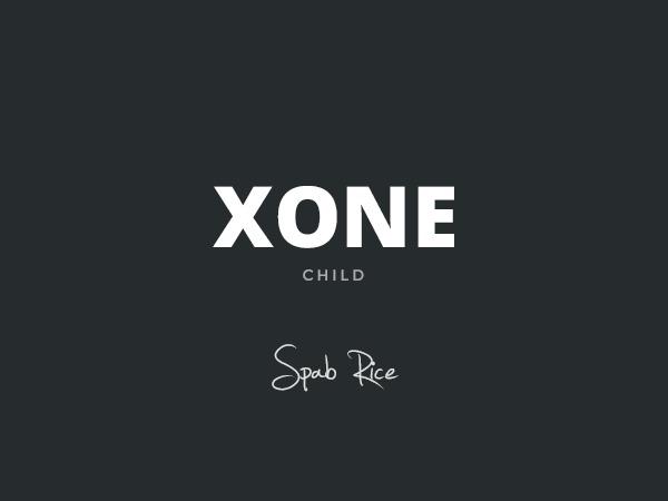Xone Child WordPress theme design