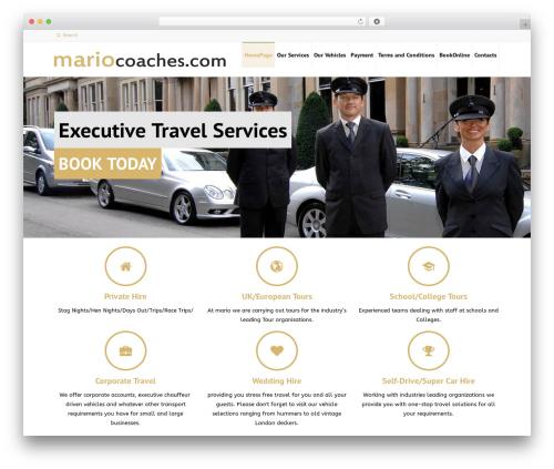 rtchild top WordPress theme - mariocoaches.com