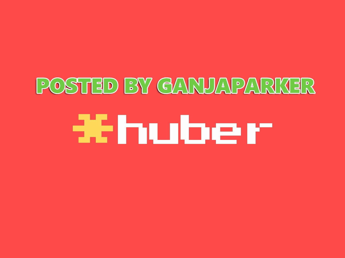 WP template Huber