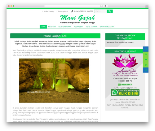 Searchlight best free WordPress theme - manigajahasli.com