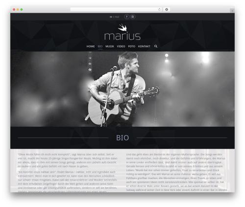 Best WordPress template The7 - mariusmusik.de