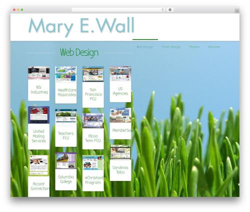 WordPress x-shortcodes plugin - maryewall.com