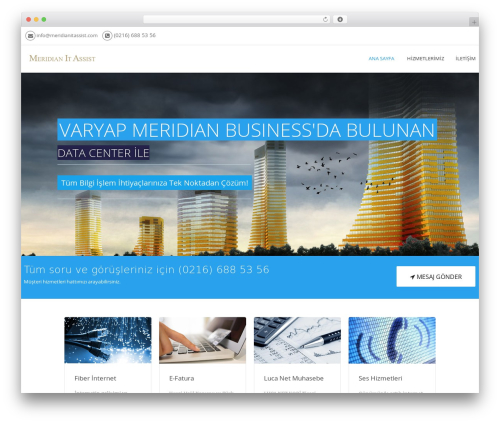 Meridian WordPress theme - meridianitassist.com