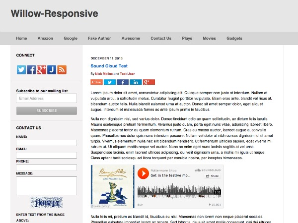 Willow-Responsive WordPress blog template